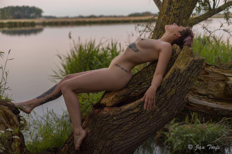 tree of life tattoos photo by model ruga veneno