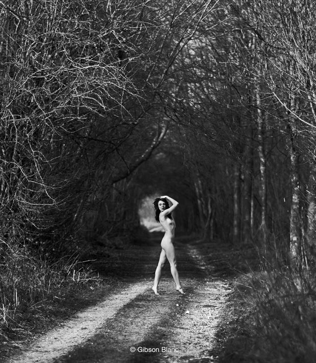 tree tunnel artistic nude photo by photographer gibson