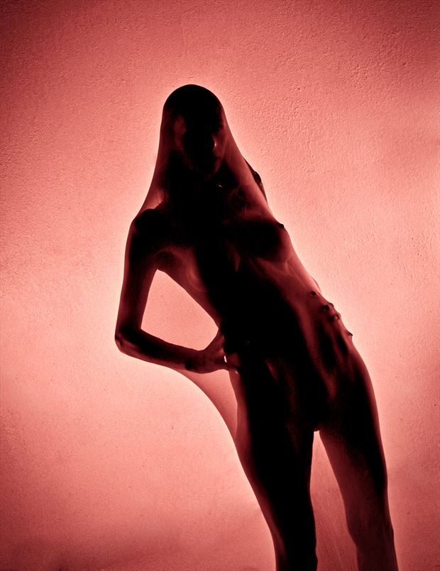 tripper body art 3 artistic nude photo by photographer dan stone photo
