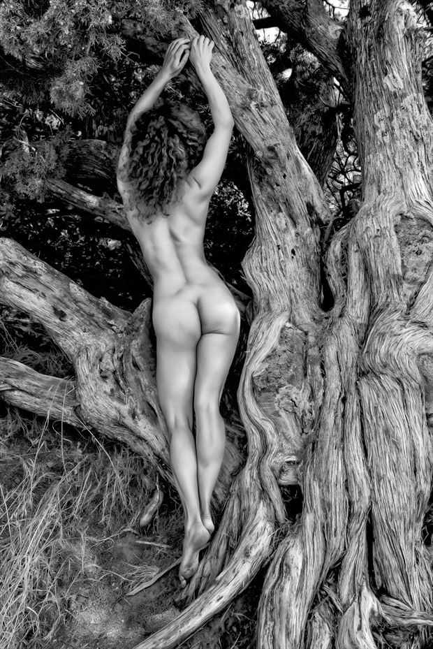 twists artistic nude photo by photographer philip turner