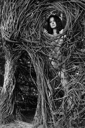 uncaved artistic nude artwork by photographer lene damtoft
