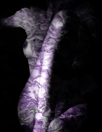 untitled 13 skin inks series artistic nude photo by photographer alancondrey
