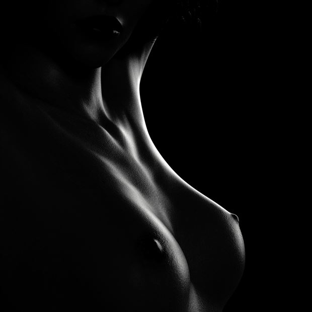 untitled sda200716 artistic nude artwork by artist stone digital art