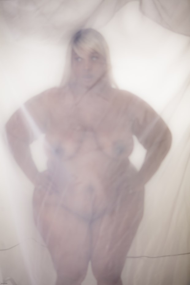 vailed %2329 Artistic Nude Photo by Photographer PWPhoto