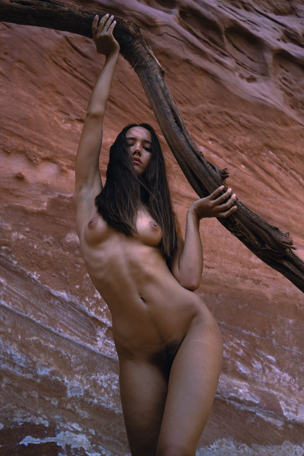 viribus artistic nude artwork by photographer soulcraft