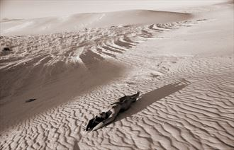 white sands national park nm artistic nude photo by photographer ray valentine