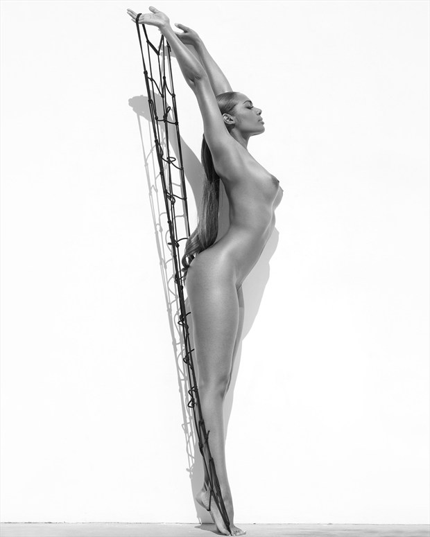 white wall series Artistic Nude Photo by Photographer Sylvie B