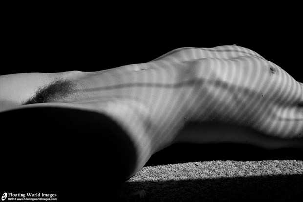 window light Artistic Nude Photo by Photographer Floating World Images