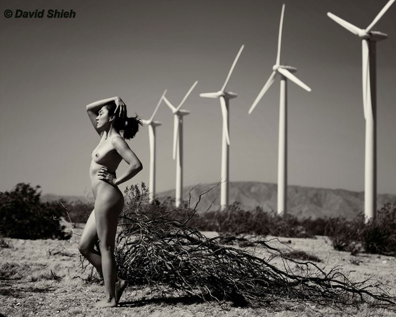 windsbraut nature photo by model crystal wings