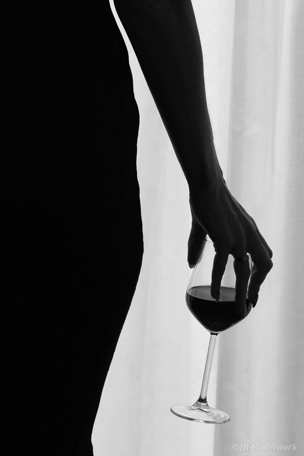 wine silhouette photo by photographer jb modelwork