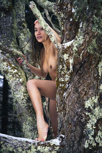winter s sting artistic nude photo by photographer rhett