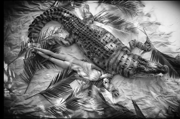 woman and crocodile artistic nude photo by photographer bradmiller