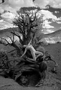 woman in juniper artistic nude photo by photographer shootist