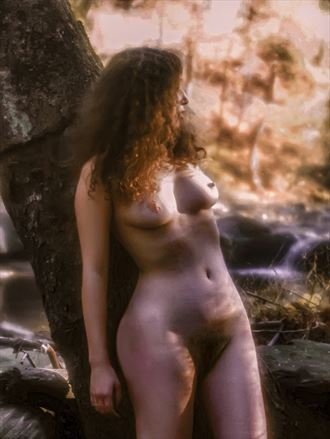 wood nymph artistic nude photo by photographer gf morgan