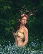 wood nymph nature photo by photographer johnjanklet