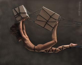 you mean these white posing boxes artistic nude photo by model ahna green