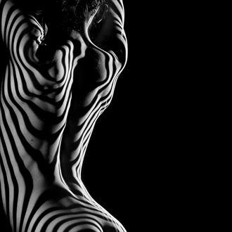 zebra back artistic nude photo by artist pj reptilehouse
