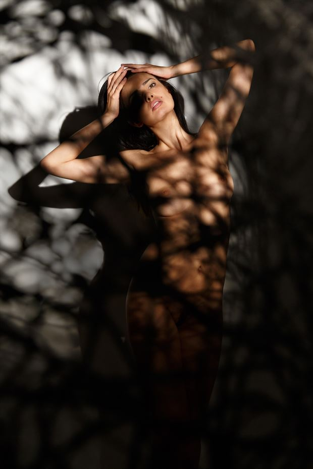 zo%C3%AF artistic nude photo by photographer desmedtjans com