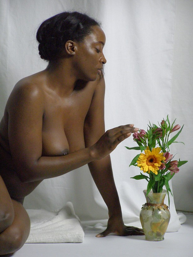 Artistic Nude Figure Study Photo print by Photographer LK Withers