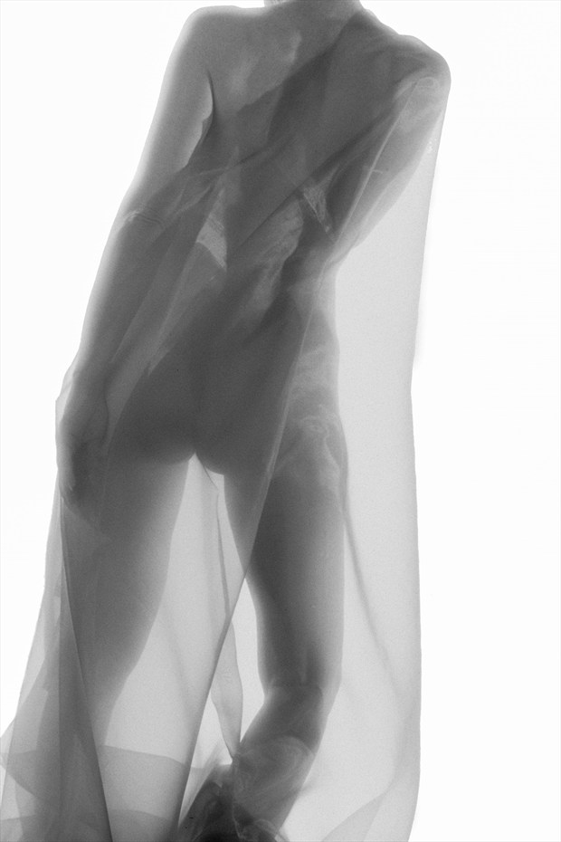 Artistic Nude Figure Study Photo print by Photographer ewe