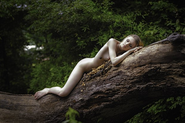 Artistic Nude Nature Photo print by Photographer ResolutionOneImaging
