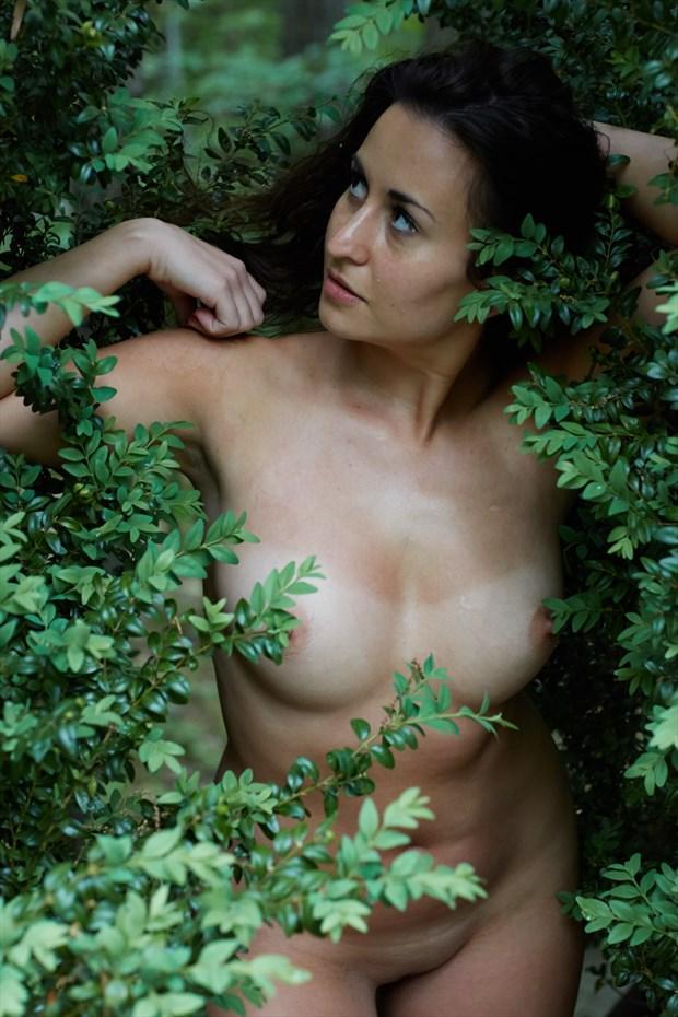 Artistic Nude Photo print by Model Amanda M Esteves