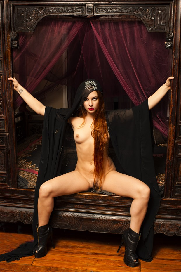 At the Den Artistic Nude Photo print by Photographer Tommy 2's