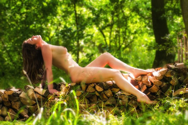 Aurora Basking on the Woodpile Artistic Nude Photo print by Photographer Ian Cartwright