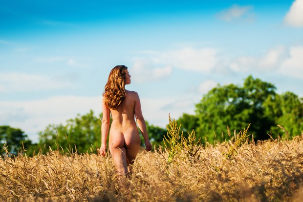 Aurora Skye Sky Clad in Golden Grass Artistic Nude Photo print by Photographer Ian Cartwright