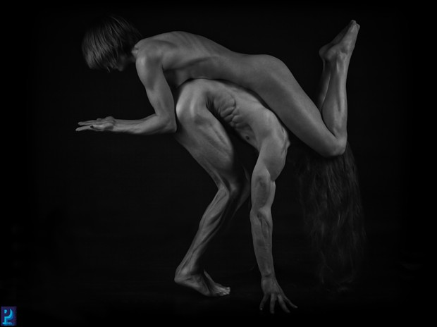 Balance Artistic Nude Artwork print by Photographer Thom Peters Photog