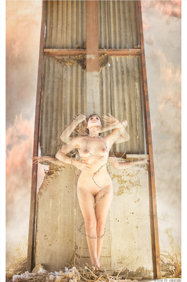 Balm of Gilead Artistic Nude Photo print by Photographer balm in Gilead