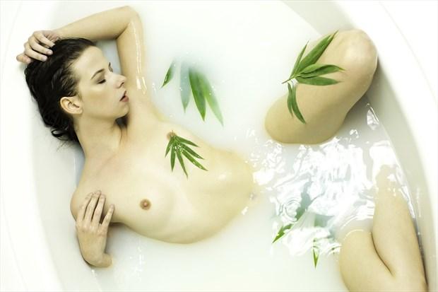 Bamboo leaf milk bath Artistic Nude Artwork print by Photographer Chris Gursky