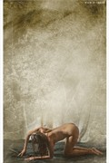Bare down Artistic Nude Photo print by Photographer balm in Gilead