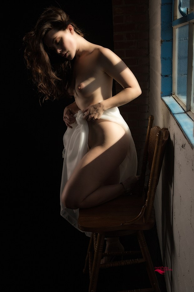 Beauty by the Window Artistic Nude Photo print by Photographer Miller Box Photo