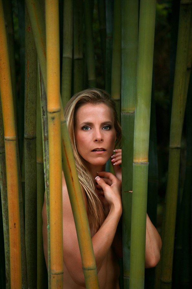 Beauty in Bamboo Artistic Nude Photo print by Photographer Chris Gursky