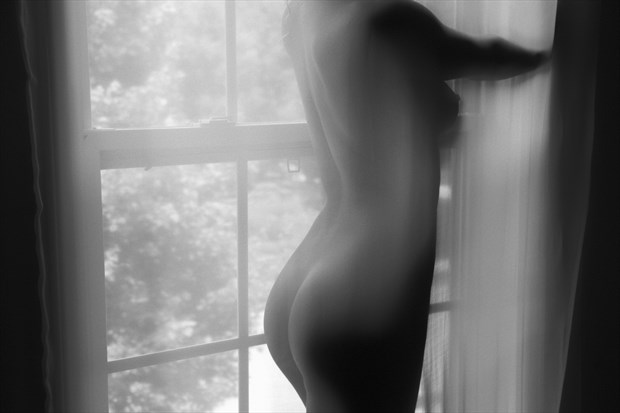 Behind the Sheer Artistic Nude Photo print by Photographer CSDewitt Buck