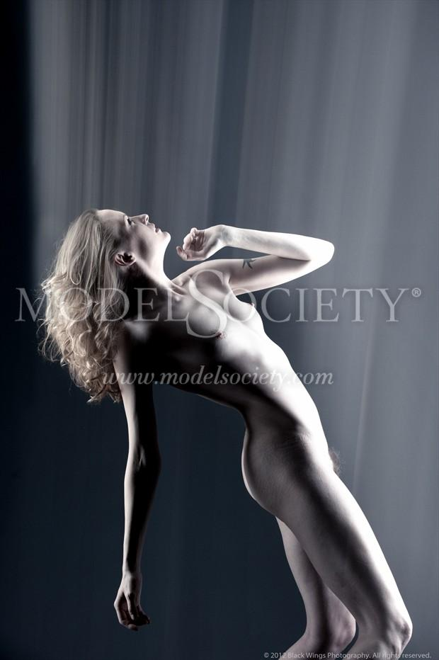 Best of Me Artistic Nude Photo print by Photographer Black Wings