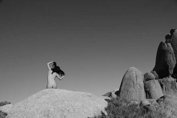 Blackbird Artistic Nude Photo print by Photographer David Winge