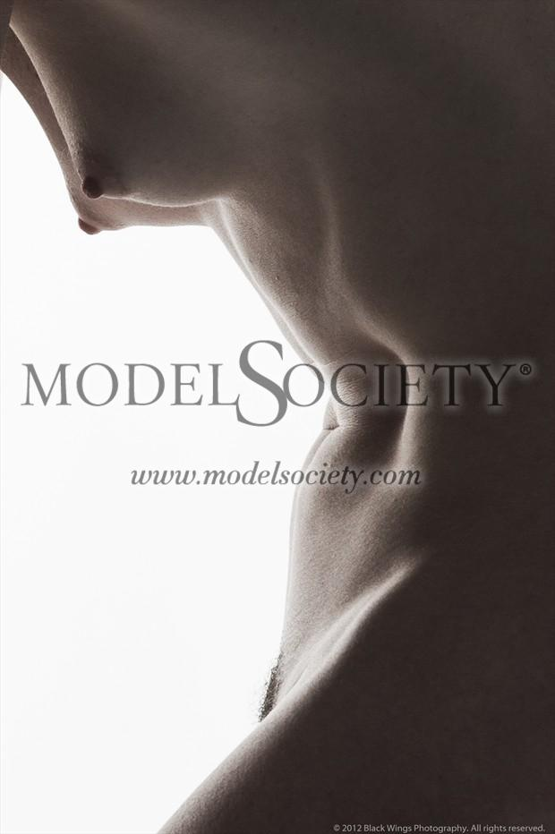 Bodyscape no.1 Artistic Nude Photo print by Photographer Black Wings