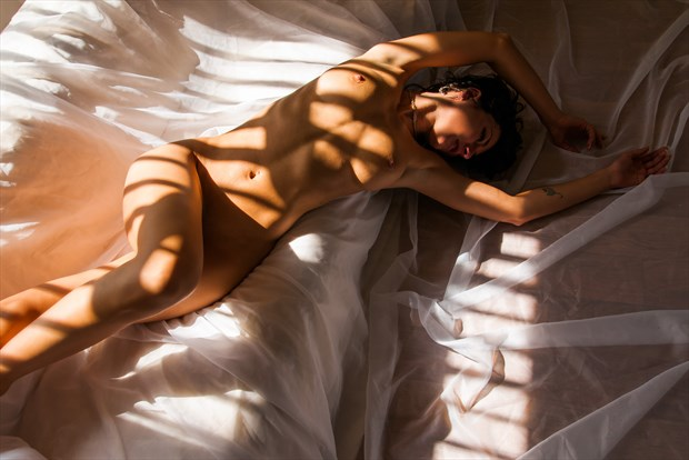 Charlie Draped in Stripey Sunlight Artistic Nude Photo print by Photographer Ian Cartwright