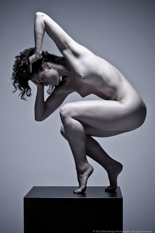CoolTouch Artistic Nude Photo print by Photographer Black Wings