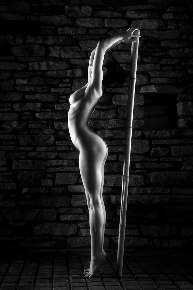 Curves and Straight Lines Artistic Nude Photo print by Photographer Carl Grim