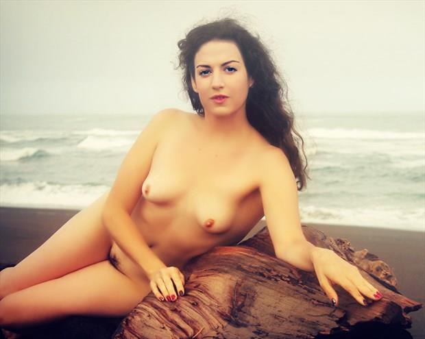 Driftwood Nymph Artistic Nude Photo print by Artist AnneDeLion
