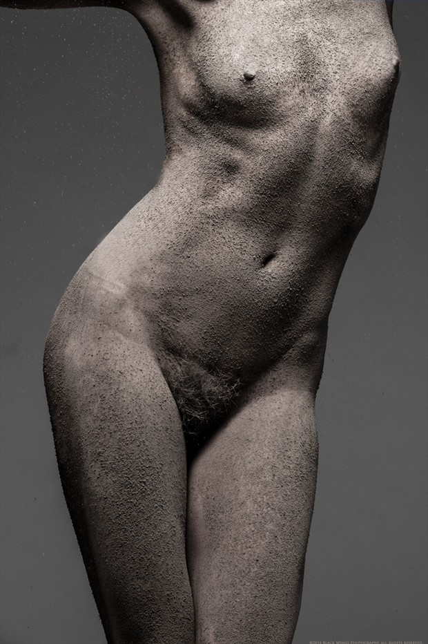 Dust   one Artistic Nude Photo print by Photographer Black Wings