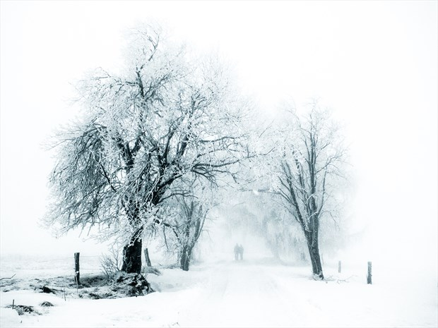 Fading into eternal white Nature Photo print by Photographer BenGunn