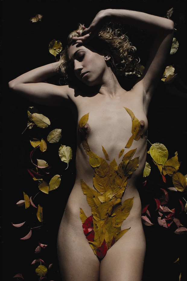 Fall For Em Artistic Nude Photo print by Artist Kevin Stiles