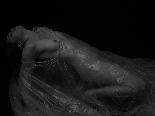 Figure Study   Amy Artistic Nude Photo print by Photographer ShadowandLightPhotos