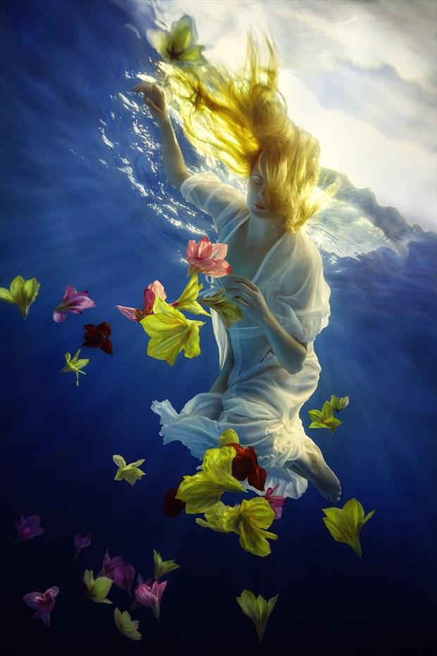 Flower Fantasy Nature Photo print by Photographer dml