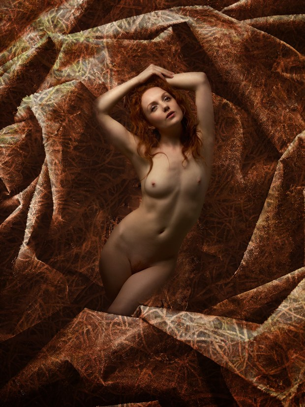 Golden Girl Artistic Nude Photo print by Photographer Ray Kirby