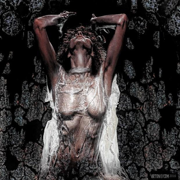 Ilse02 Artistic Nude Artwork print by Photographer Arton